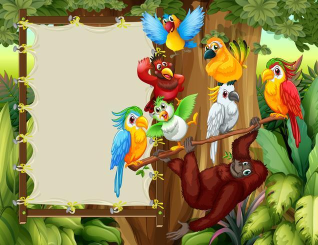 Ramdesign med vilda fåglar och apa vektor