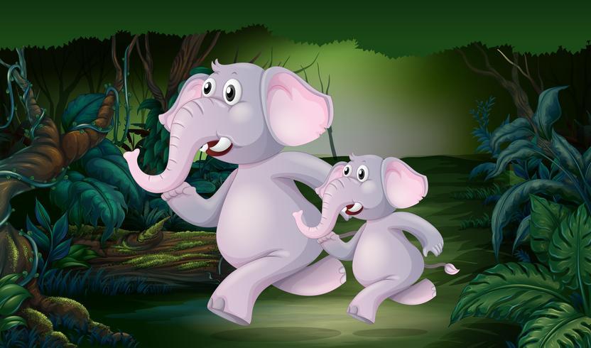 Elefant, der in den Dschungel läuft