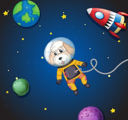 Een poedel in de ruimte