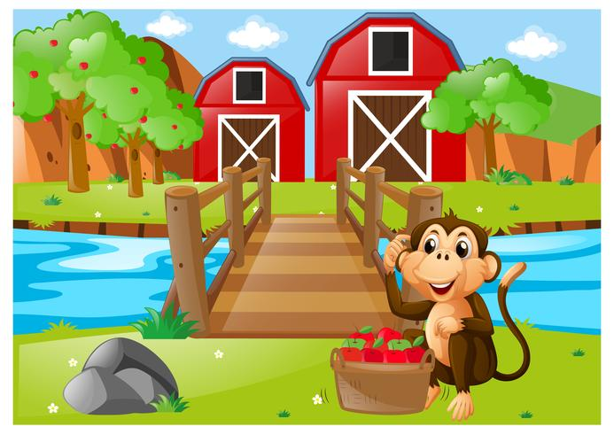 Monkey and bucket of apples in orchard