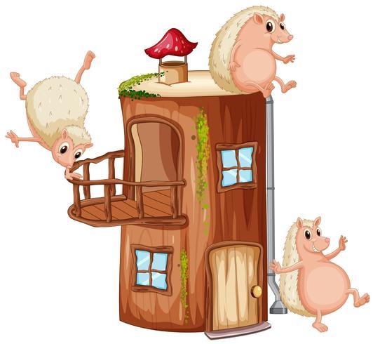 Hérisson jouant à la maison en bois