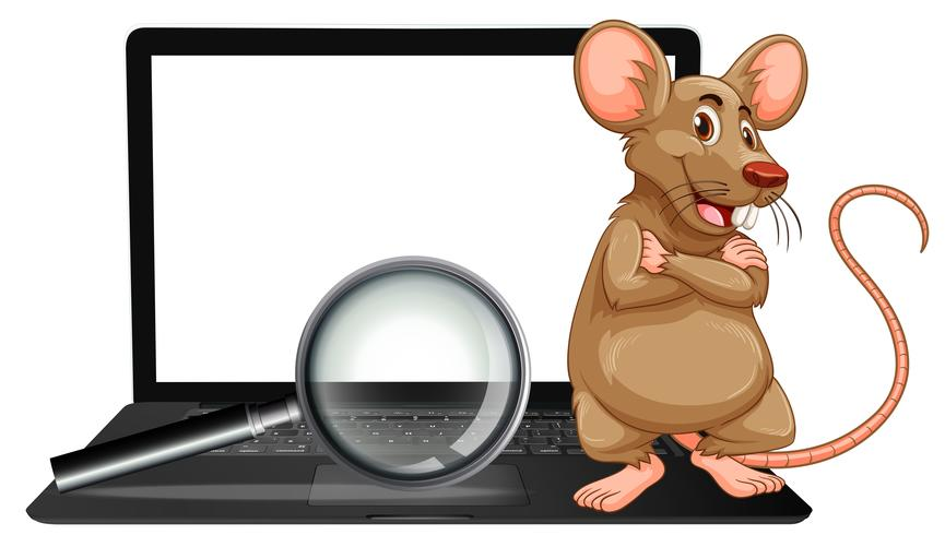 A rat on laptop and magnifying glass