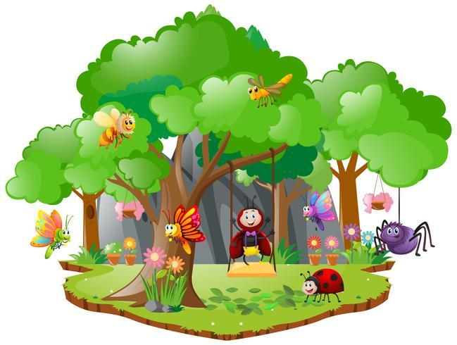 Beaucoup d'insectes vivant en forêt