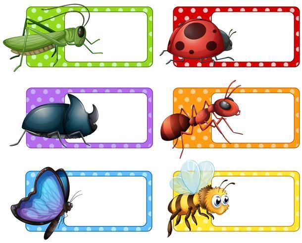 Quadratische Etiketten und viele Insekten