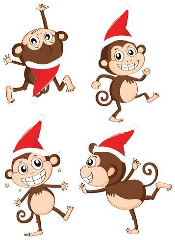 Christmas theme with monkeys wearing christmas hat