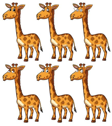 Giraffe with different emotions vector