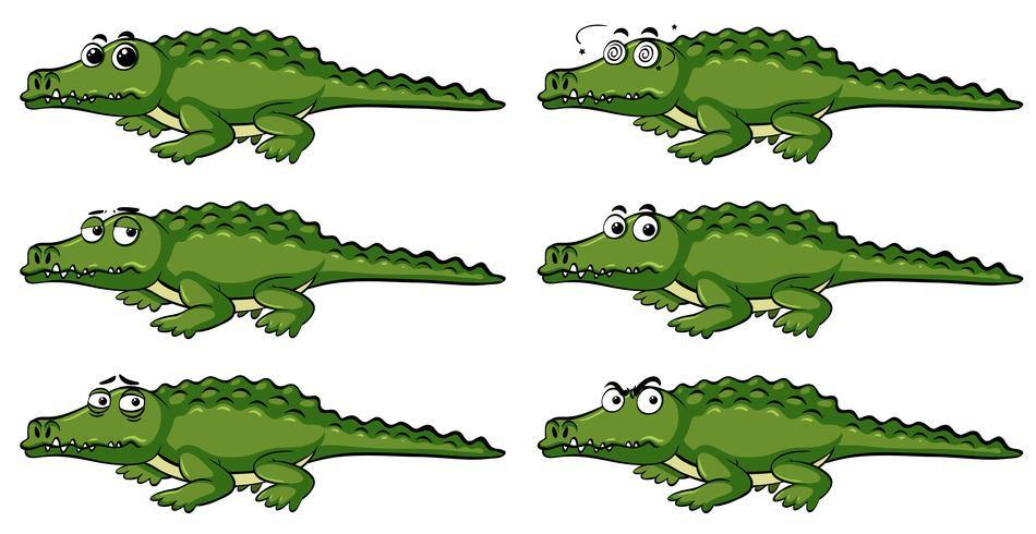 Crocodile with different emotions