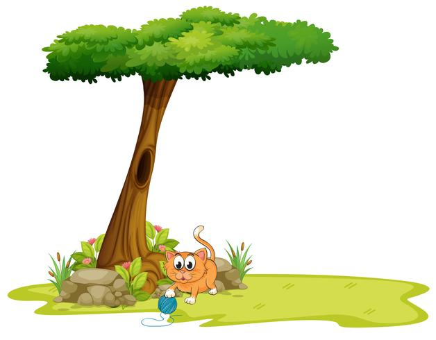 Eine orange Katze, die unter dem Baum spielt