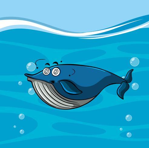 Risultato immagini per balene polipi epesce spada disegni