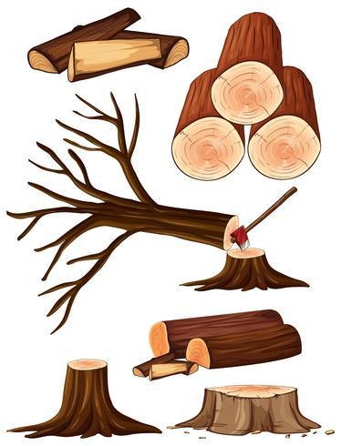 En process av skärande träd