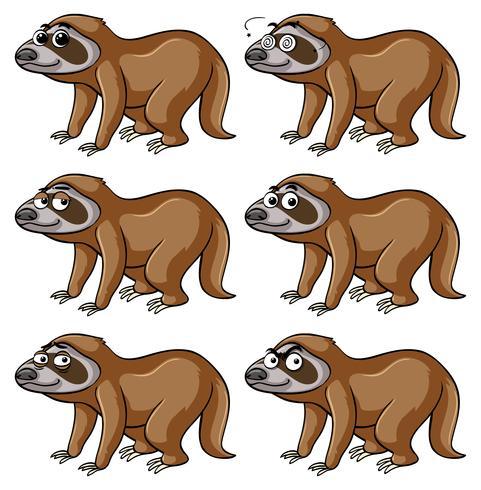 Sloth med olika känslor vektor