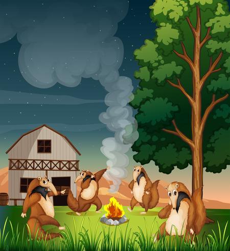 Spielerische wilde Tiere, die ein Lagerfeuer machen