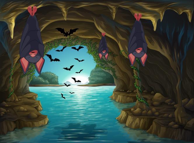 Murciélagos viviendo en la cueva oscura vector