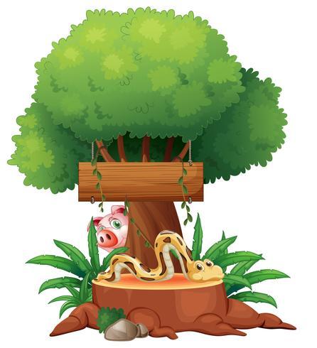 Un serpente con un cartello di legno e un maiale sul retro