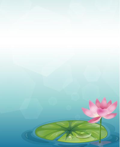 A stationery with a waterlily and a pink flower