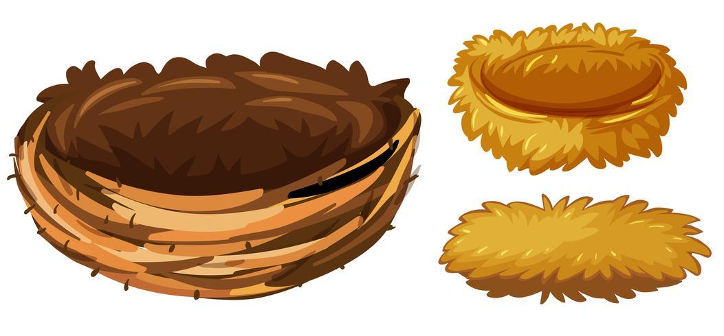 Tres diferentes tipos de nidos de aves.