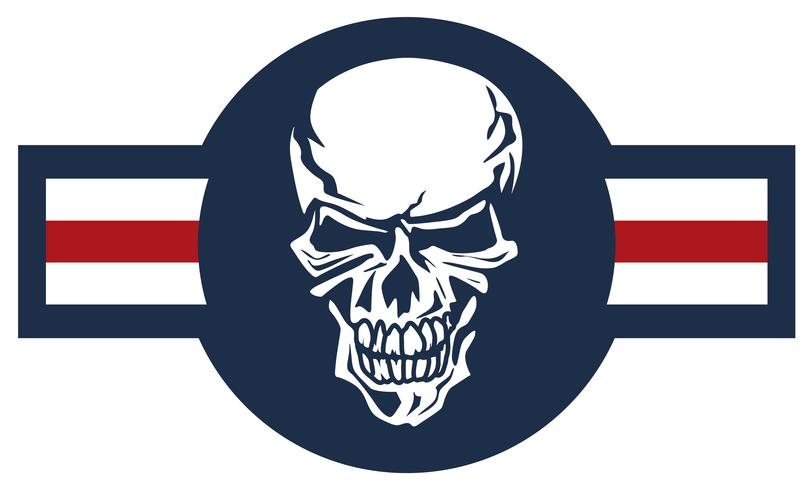 Military aircraft emblem with skull roundel color vector illustration