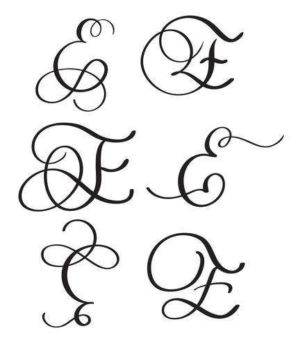 conjunto de letra de caligrafia arte E com florescer de espirais decorativos vintage. Ilustração vetorial EPS10