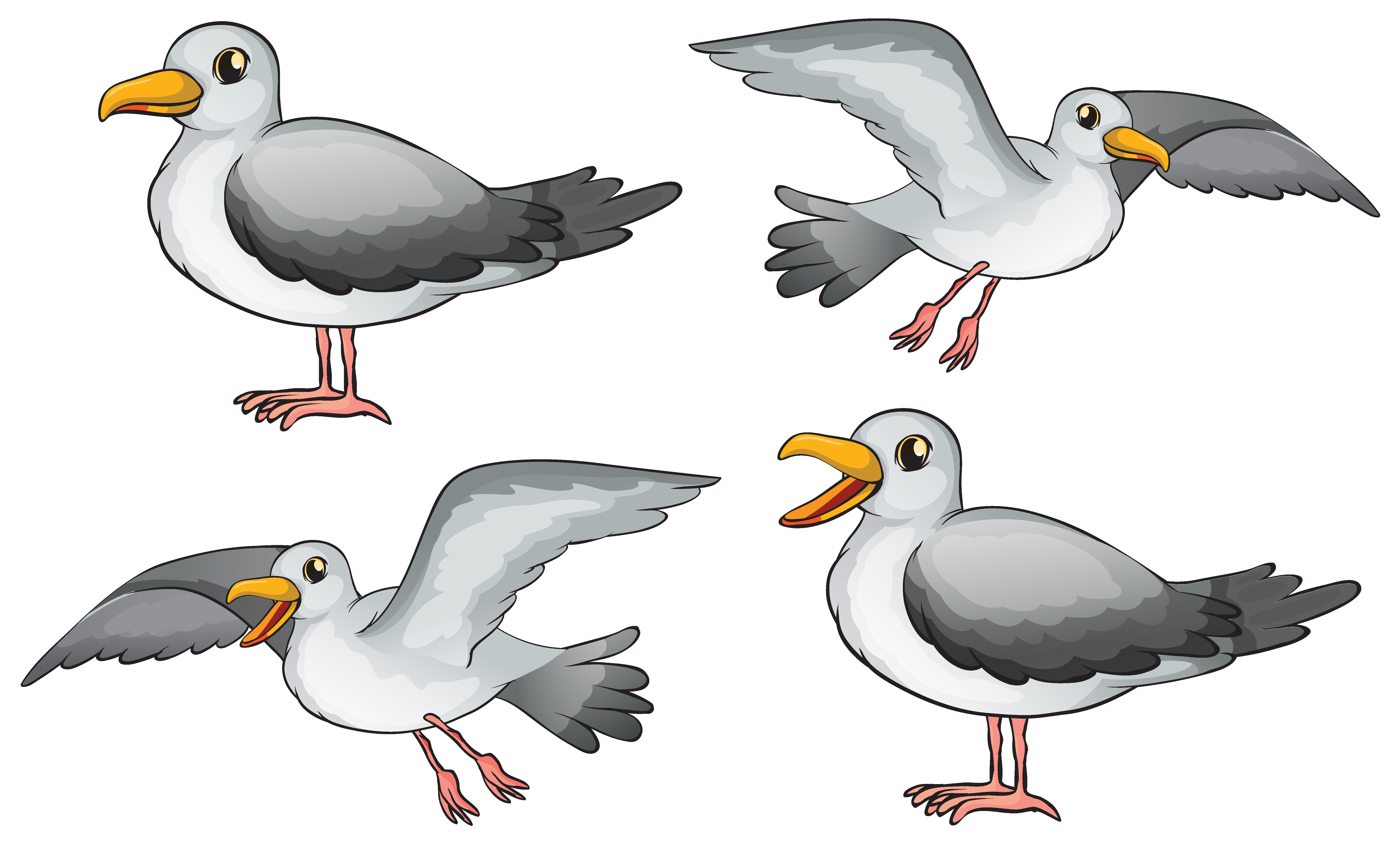 Four birds - Download Free Vectors, Clipart Graphics ... - photo#36