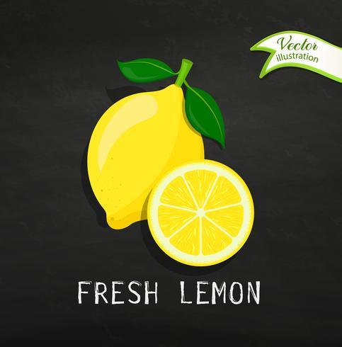 Limão fresco vetor