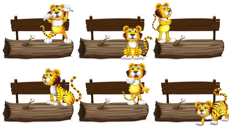 Carteles de madera con tigres.