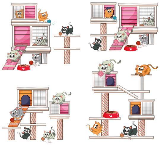 Gatos y diferentes diseños de cat house.