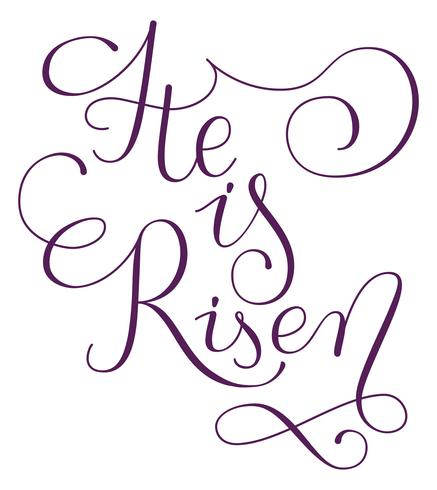 He is risen phrase. Hand drawn easter greeting card.  Modern calligraphy