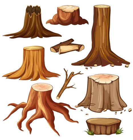 Different stump trees on white background