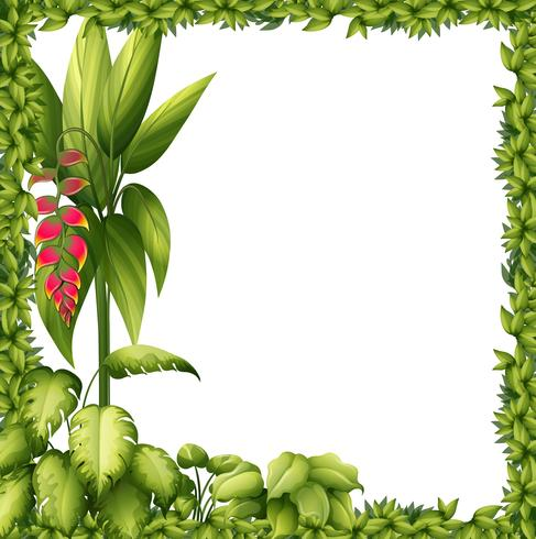 Una cornice verde con un fiore