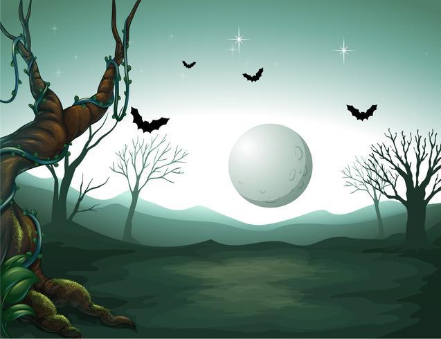 Un cementerio y una luna