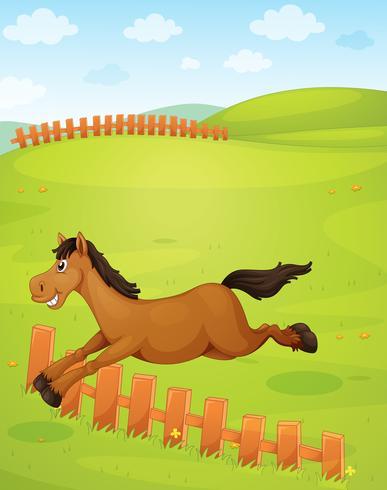 Ein Pferd