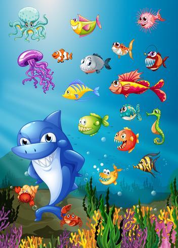 Haaien en vissen zwemmen onder de zee vector