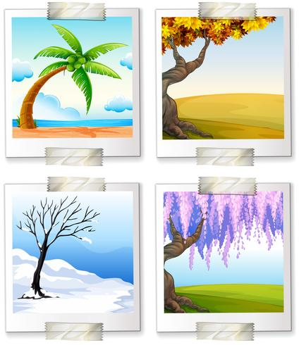 Olika bilder av de fyra sjöarna