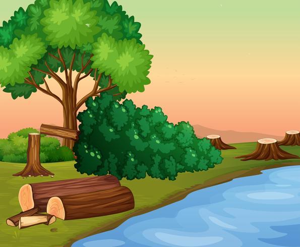 Scena con boschi tagliati vicino al fiume
