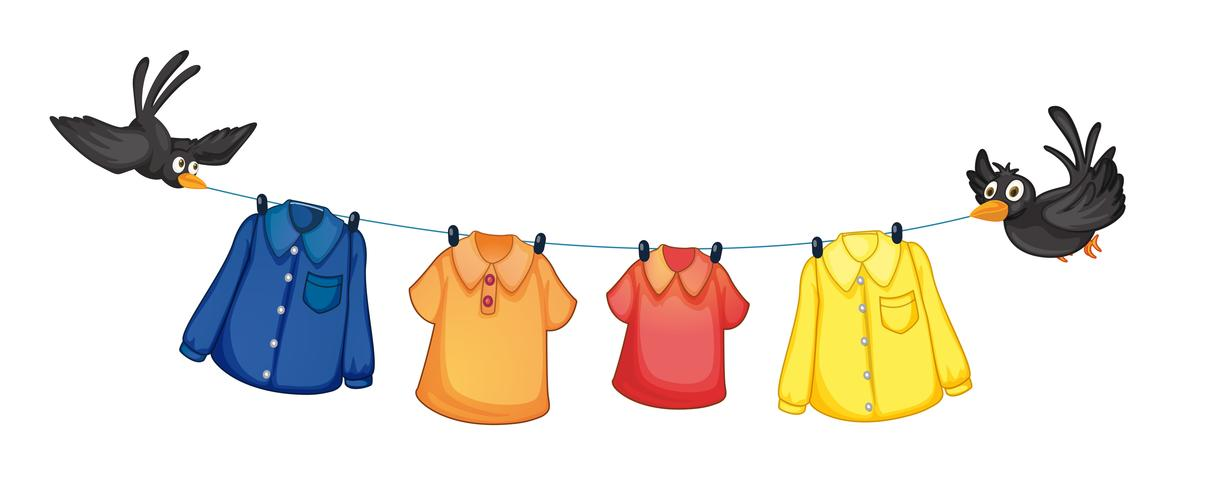 Four different clothes hanging with birds vector