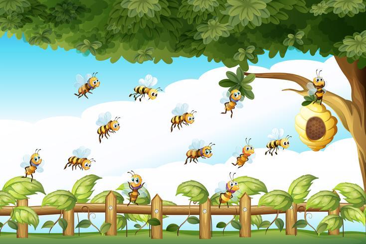 Escena con abejas volando alrededor de la colmena vector