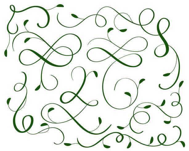 groene set van vintage bloeien decoratieve kunst kalligrafie whorls voor ontwerp. Vector illustratie EPS10