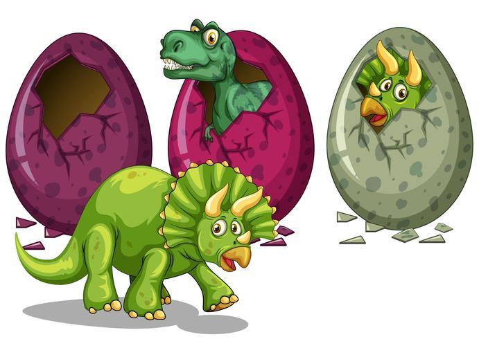 Tres tipos de dinosaurios para incubar huevos. vector