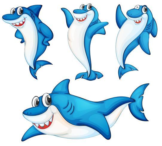 Série requin