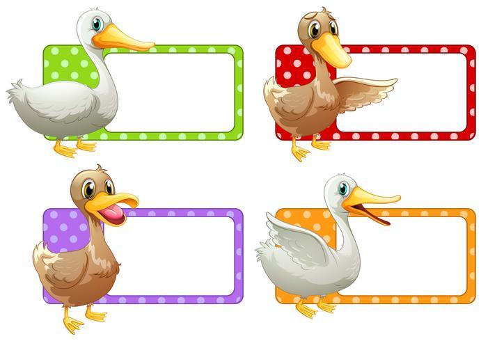 Etiquetas quadradas com patos