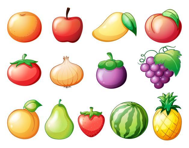 Différentes sortes de fruits vecteur