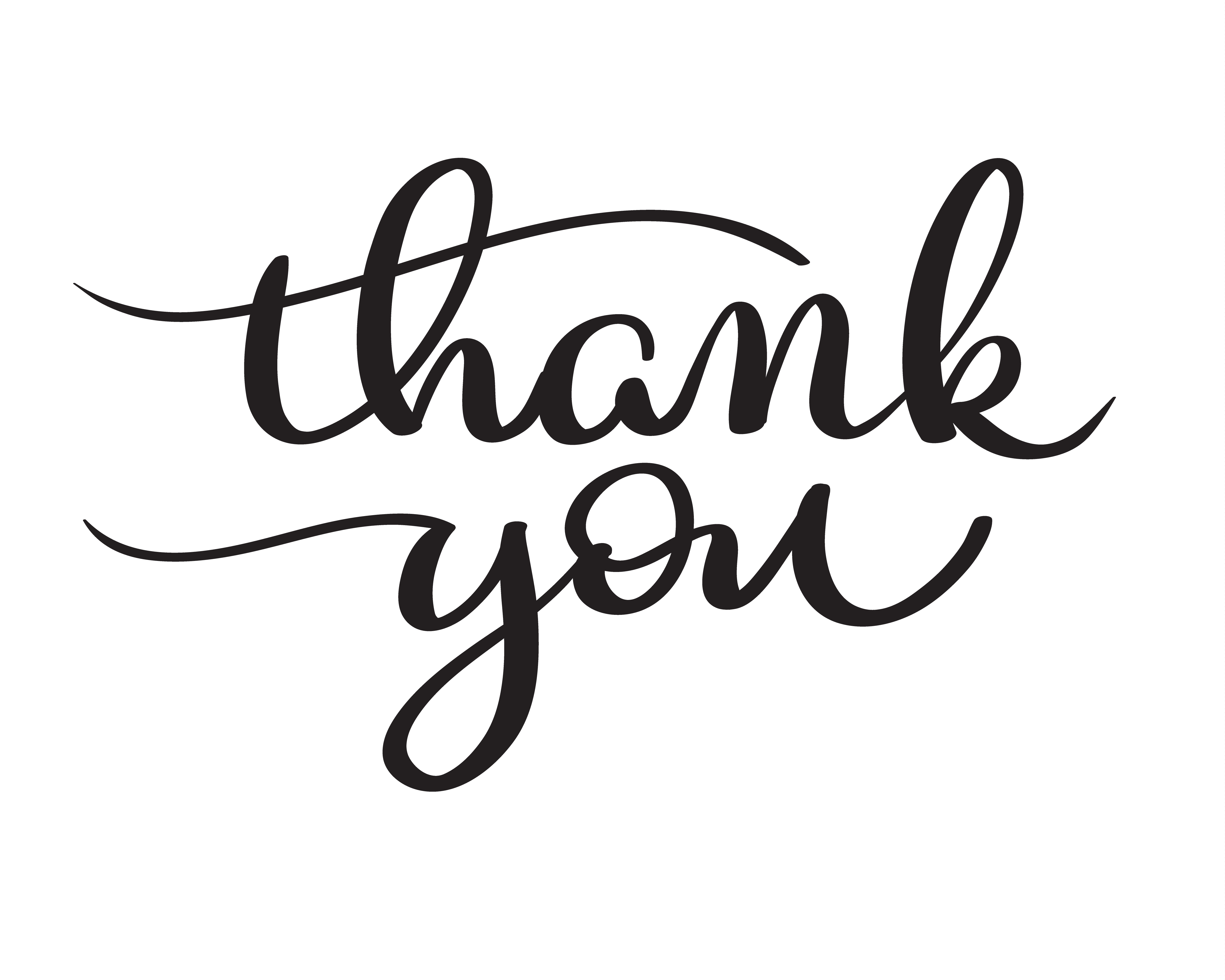 hand drawn vector thank you text on white background