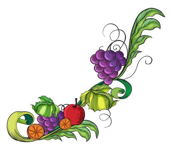 Eine fruchtige Grenze