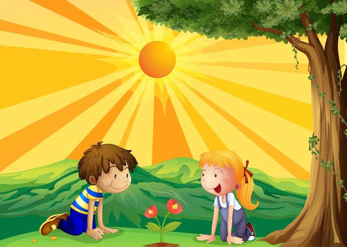 Kinderen waken over een bloem