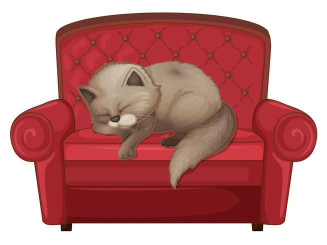 Un gato durmiendo en el sofá.