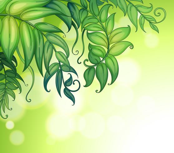 Ett speciellt papper med gröna blad