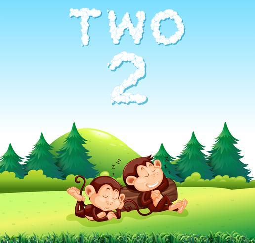 Twee aapslaap in de aard