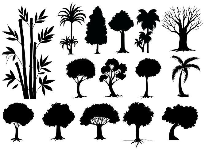Sihouette diversi tipi di alberi