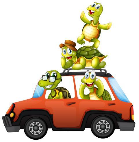 Een schildpadfamilie op een auto