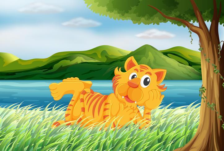 En tiger avkopplande på gräset
